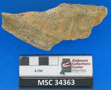Edaphodon mirificus