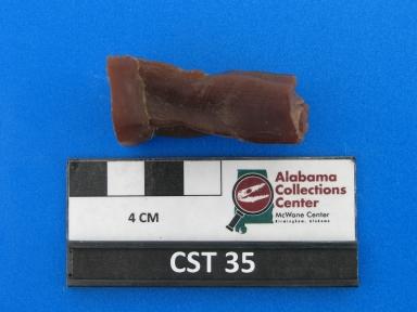 Euceratherium collinum