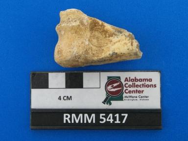 Odocoileus? virginianus